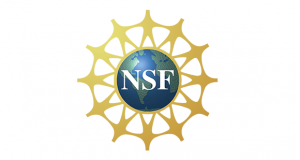 NSF Logo 580x309